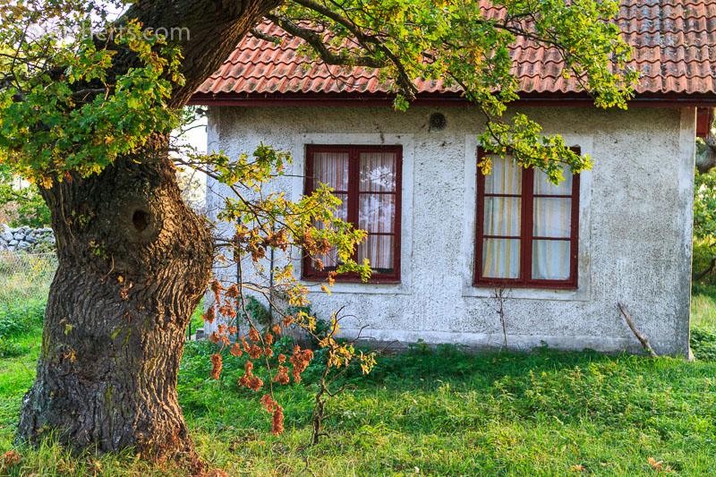 Kleine Hütte am Langen Erik im Norden Ölands. ISO 500, 1/60 s. Blende 5.