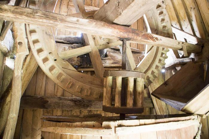 Die Holzmechanik von Innen