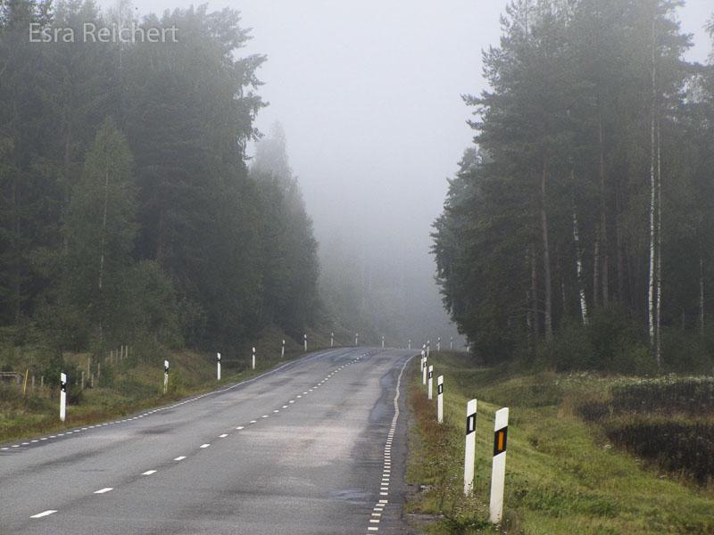 In den Morgenstunden lag Nebel auf der Landschaft