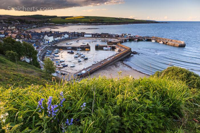 Der Hafen von Stonehaven, Schottland