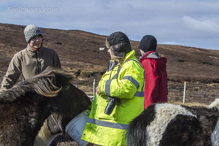 June Browne brachte uns alles über ihre Shetland-Ponies bei.