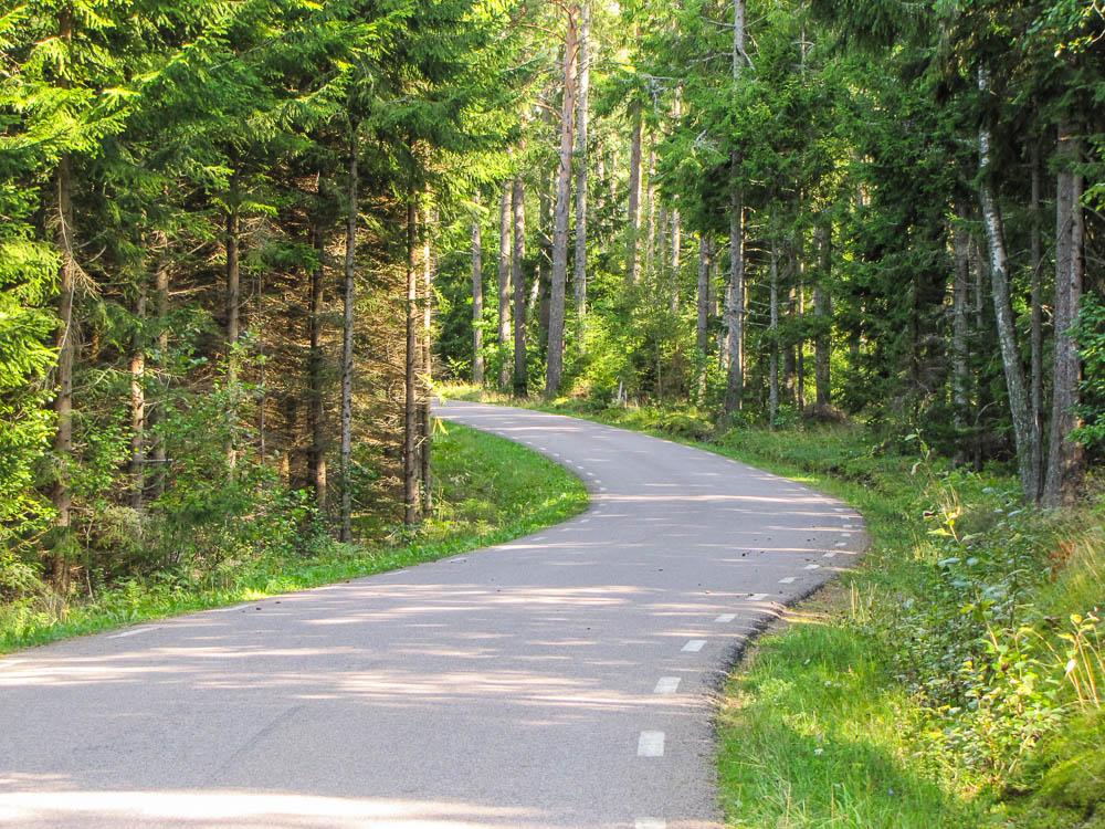 Waldliebhaber finden in Schweden ihr Paradies. So sehen viele der Landstraßen aus.