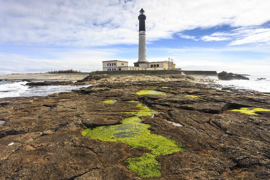 Algen vorm Leuchtturm Grand Phare de Ile de Sein