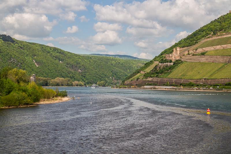 Der Rhein direkt hinter Bingen, hier ging es für mich los
