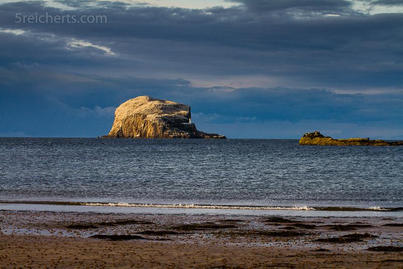 Bass Rock vom Strand aus gesehen