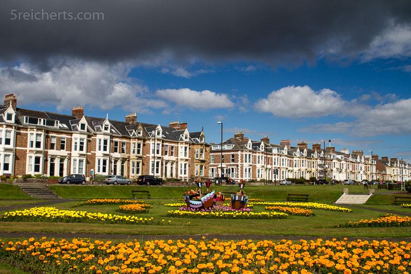 Blumen und Häuser, Tynemouth