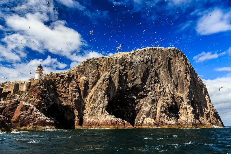 Bass Rock vom Boot aus gesehen
