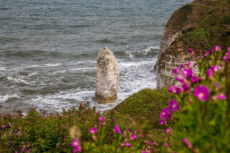 Küste Flamborough