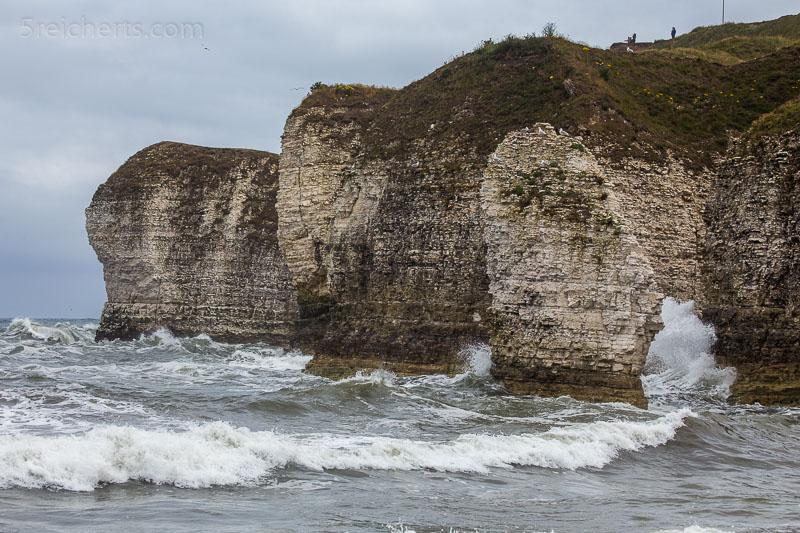 Steilküste Flamborough