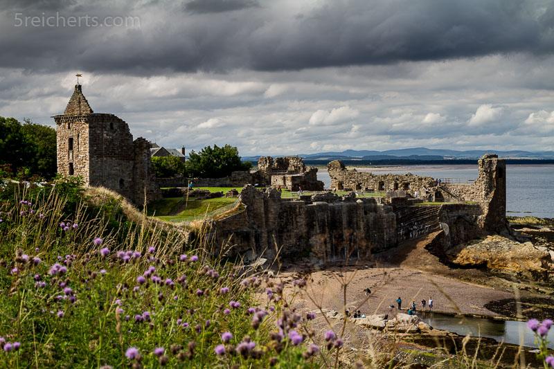 Burgruine in St Andrews