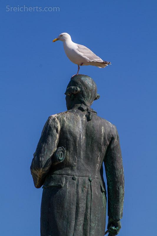 James Cook mit Möwe schaut über Whitby
