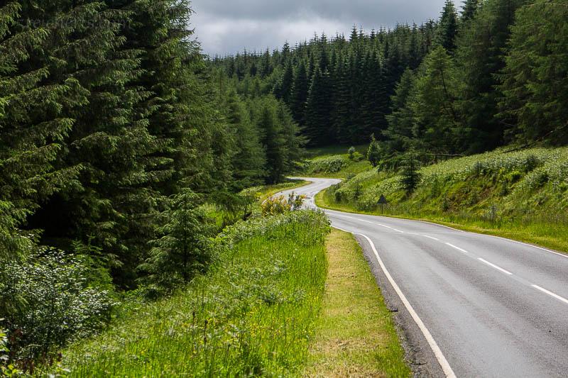 Auf dem Weg nach Newcastle fuhr ich durch den Kielder Forest