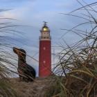 Grindel und Leuchtturm am Abend