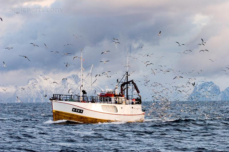 Fischerboot auf dem Vestfjord