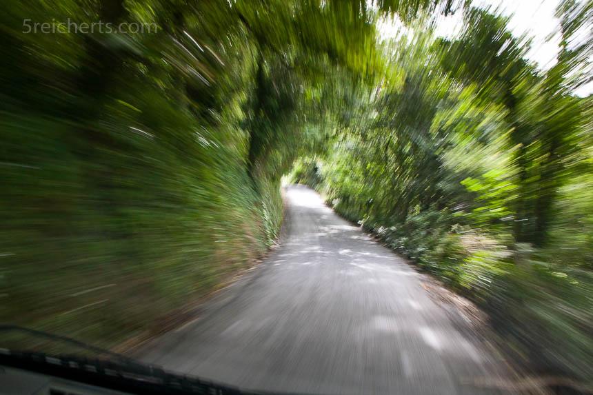 Diese Fahrt auf einer von Grün gesäumten Straße ist aus der Hand mit 1/8 Sekunde aufgenommen worden. Hier ist zwar nichts richtig scharf, dafür entsteht der Eindruch hoher Geschwindigkeit.