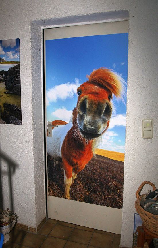 Ein Shetland-Pony bewacht unseren Lagerraum im Keller. Gedruckt ist es auf Klebefolie in Lebensgröße.