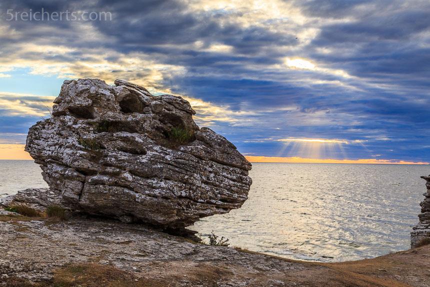 Wir sehen die ersten Raukare auf Gotland ganz im Süden der Insel