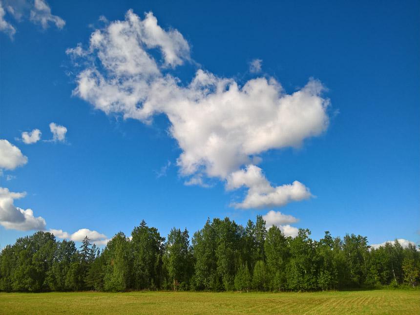 Sonne, kühler Wind und angenehme Temperaturen