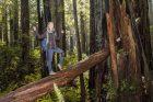 Sandra im Redwood Wald
