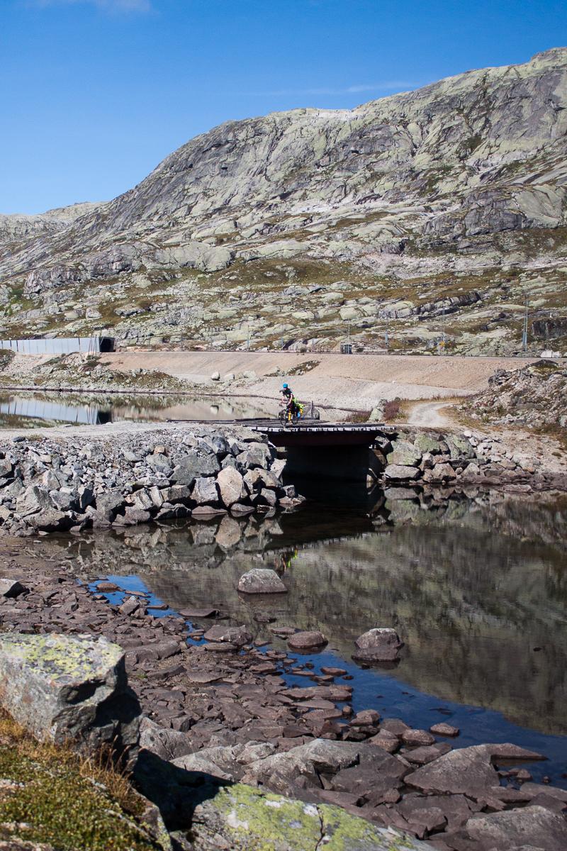 Hier in Norwegen gibt es schon ab 1.000 Metern keine Bäume mehr.
