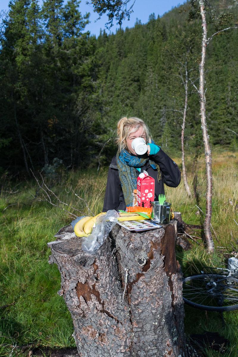 Dieser Baumstumpf dient uns alst Frühstückstisch.