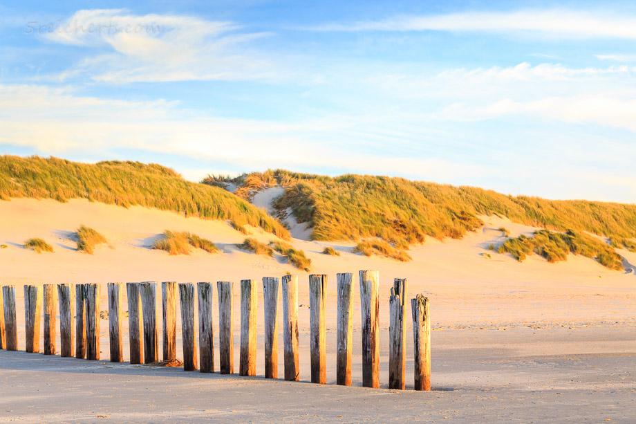 Buhnen am Strand von Ameland