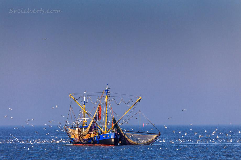 Fischerboot vor Ameland