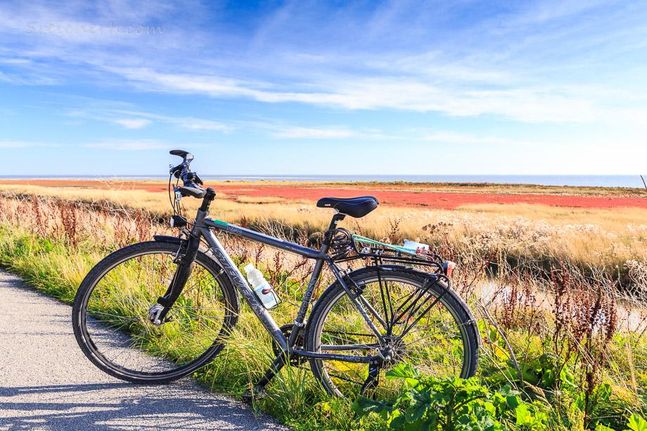 Radfahren auf Ameland