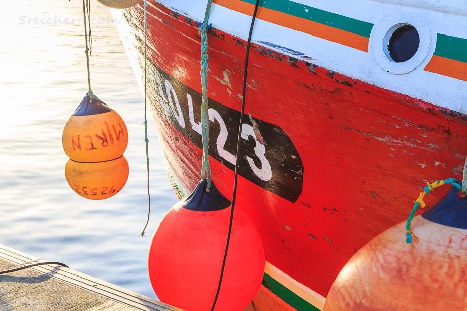 Fischerboote im Hafen von Guilvinec, Penmarch, Bretagne