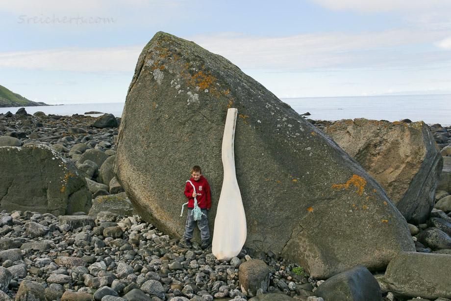 Unterkiefer eines Pottwals, Norwegen