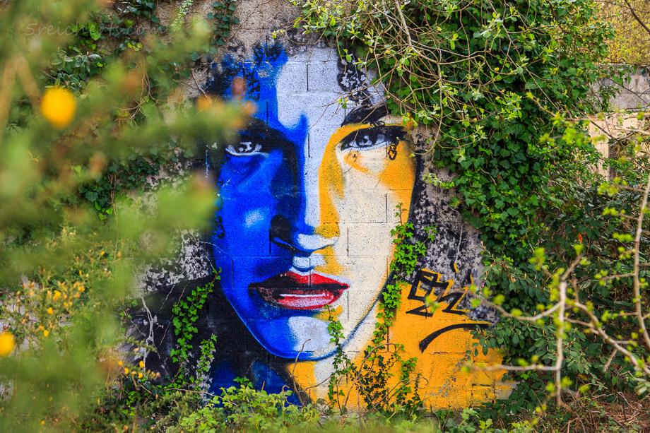 Graffitti an einer Ruine, Cap de la Chevre, Bretagne