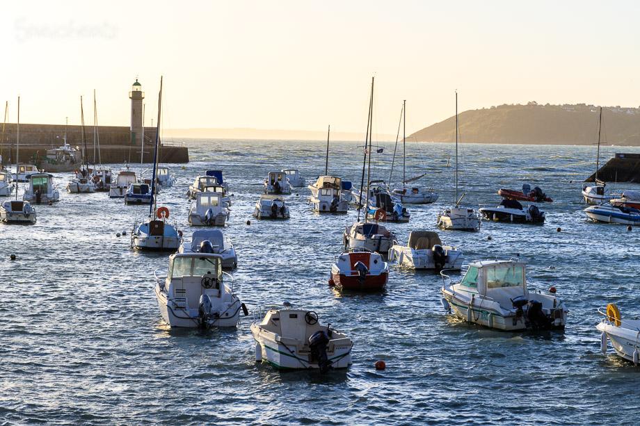 Morgens im Hafen von Binic