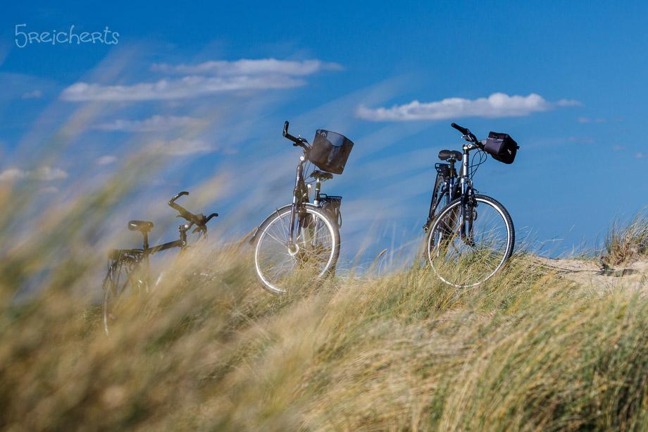 Fahrräder in den Dünen, Gouville