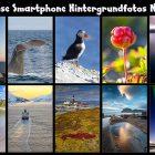 Kostenlose Smartphone-Hintergrundfotos von Norwegen