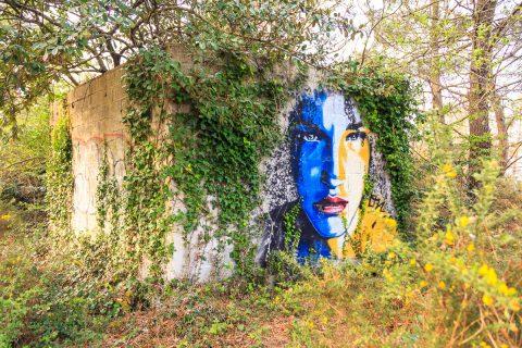 Graffity, Ile Vierge, Bretagne