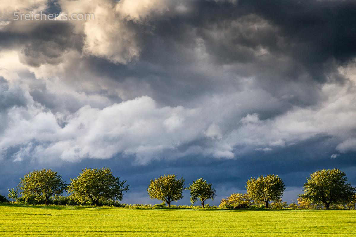 Regenwolken über Rapsfeld