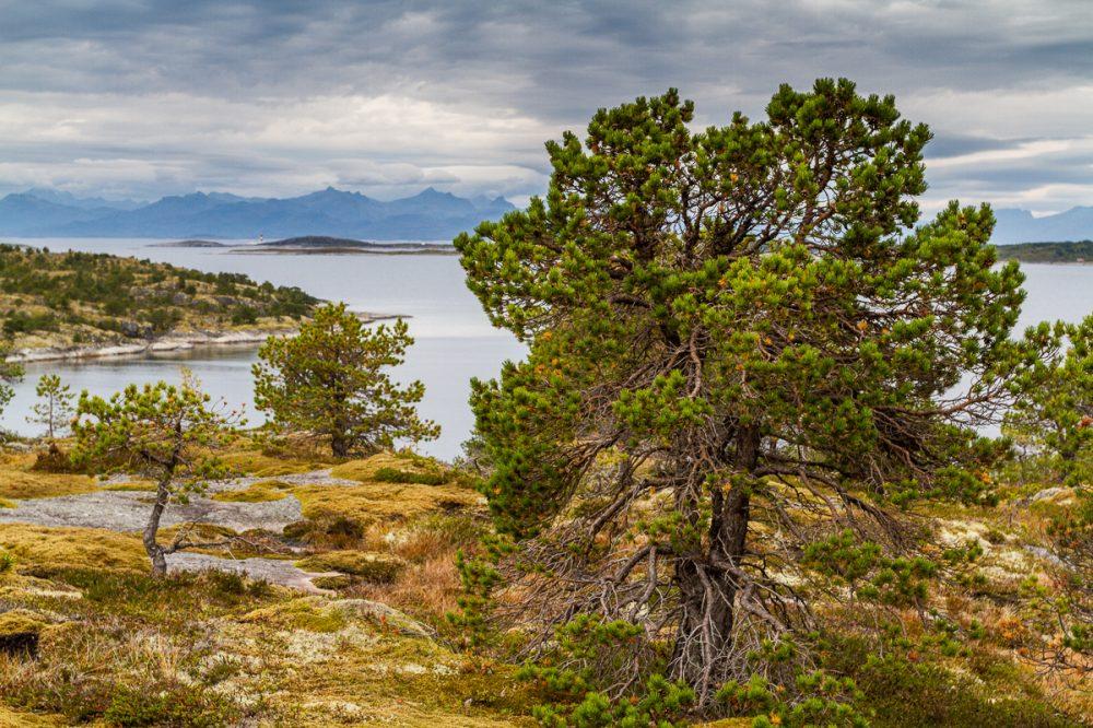 Tranøy, Norwegen