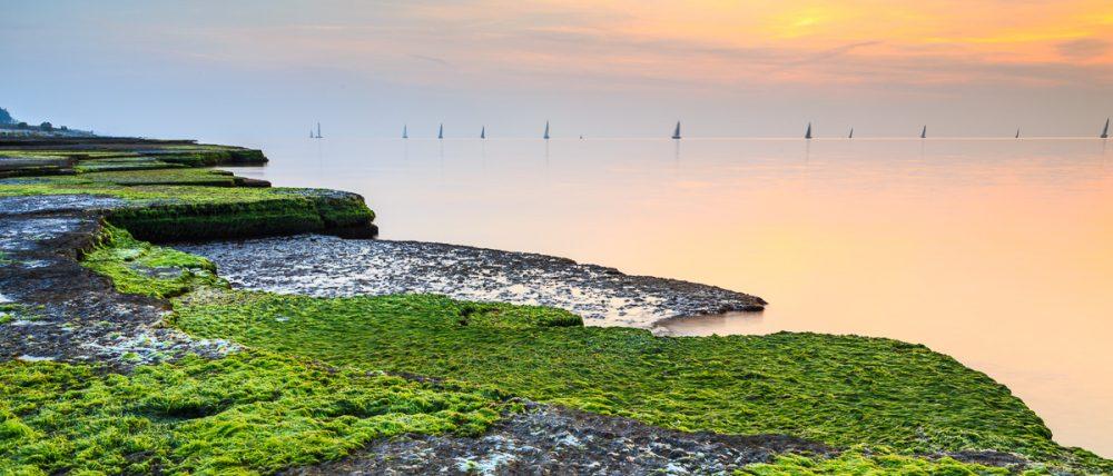 Neptuni åkrar und Segelboote, Insel Öland, Schweden