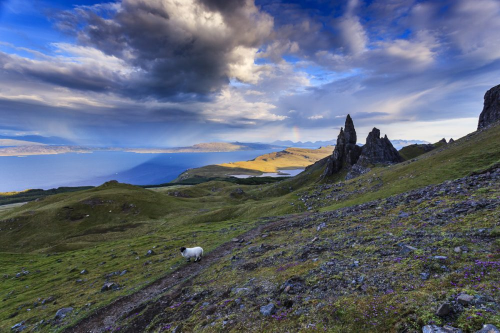 Old Man of Storr, Isle of Skye, Schottland