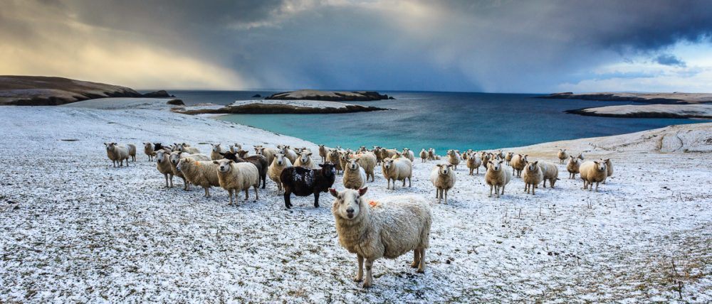 Mainland Shetland, Schottland