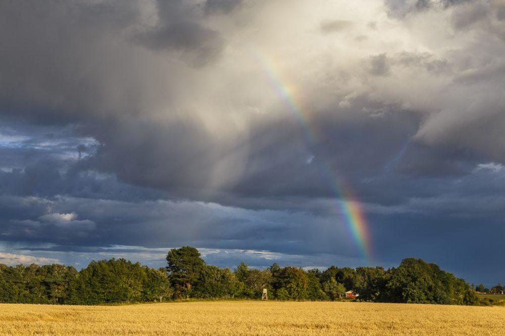 Regenbogen, Schweden