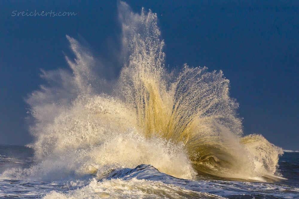 Springende Wellen - Endlich passt alles! Hohe Wellen und Abendlicht.