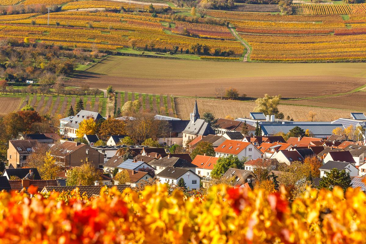 Schwabenheim im Herbst