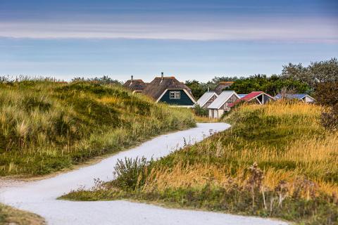 Radweg auf Ameland